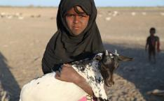 Child holds a goat.